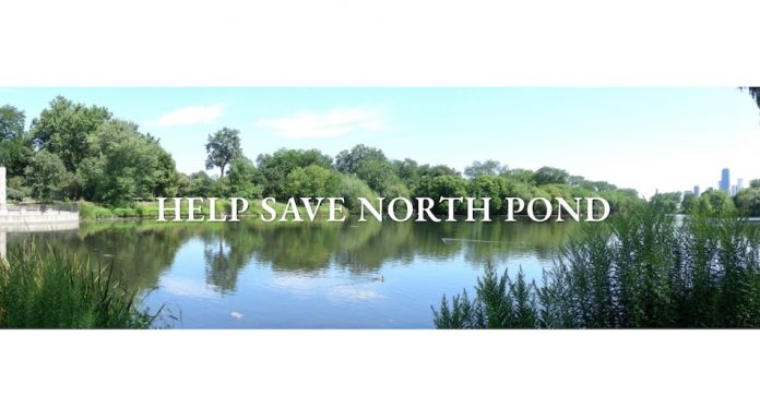 North Pond Lincoln Park staw